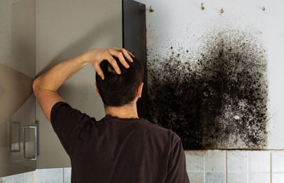 mold remediation Moorpark