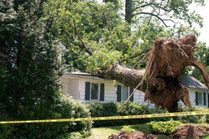 storm damage repair Simi Valley, California