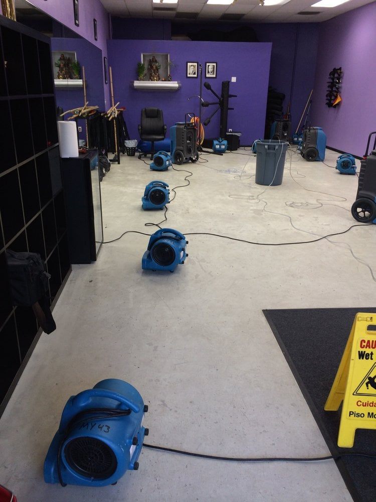 water damage removal services