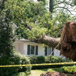 storm damage repair Westlake Village, California